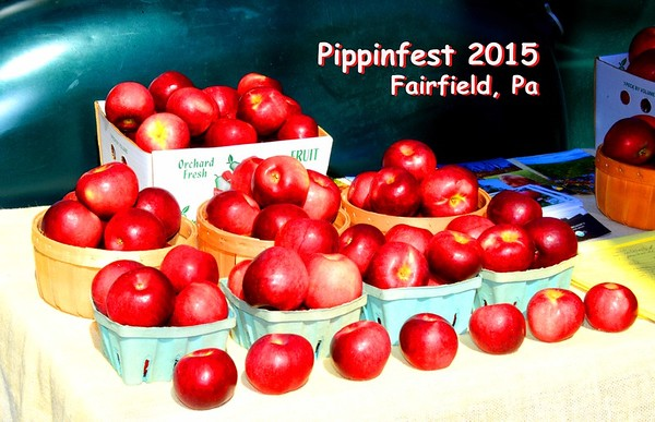 Pippinfest 2015